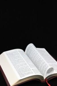 Bible no famine