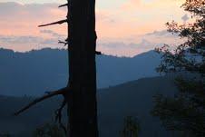 snag sunset 2