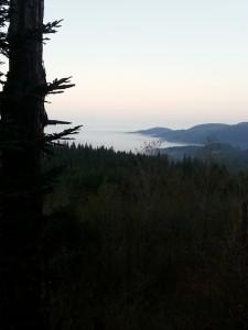 fog-valley