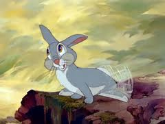 thumper twitterpated