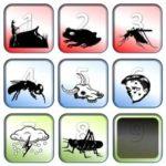 10-07-16-ten-plagues-from-exodus